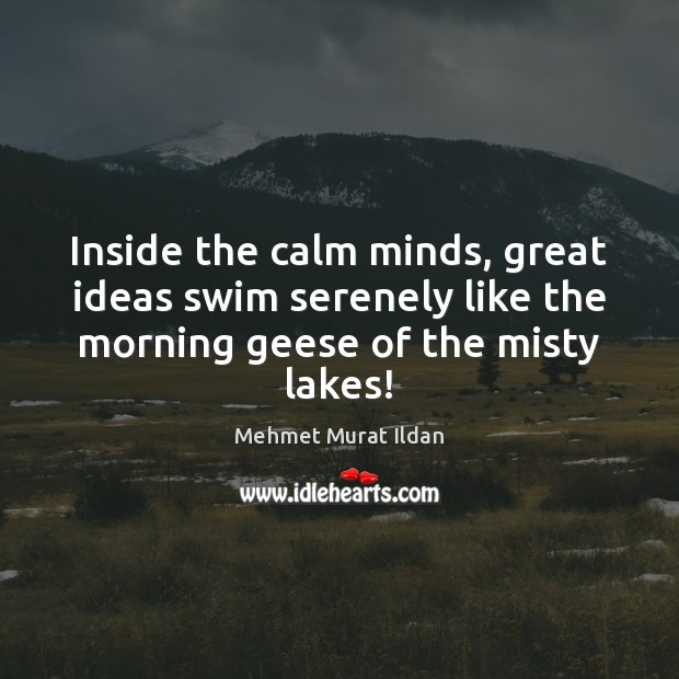 Inside the calm minds, great ideas swim serenely like the morning geese Mehmet Murat Ildan Picture Quote