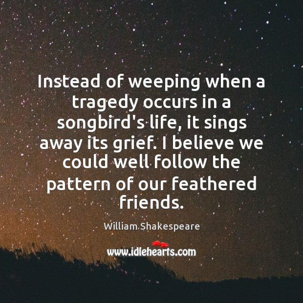 Image, Instead of weeping when a tragedy occurs in a songbird's life, it