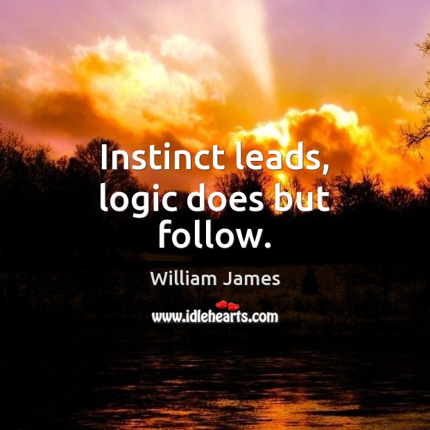 Instinct leads, logic does but follow. Image