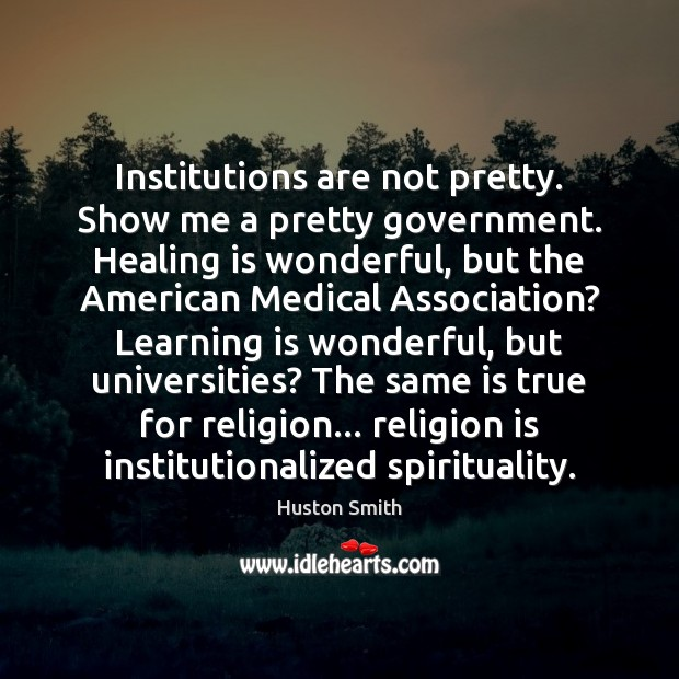 Institutions are not pretty. Show me a pretty government. Healing is wonderful, Learning Quotes Image