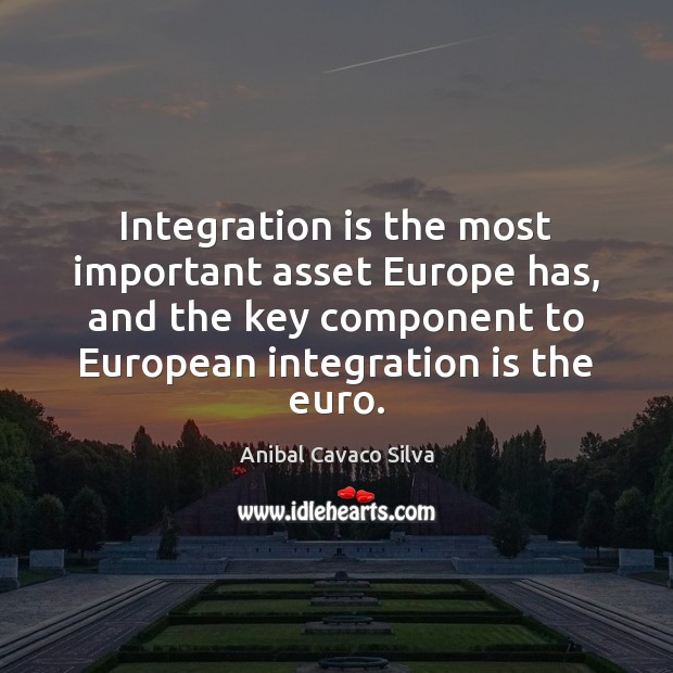Image, Integration is the most important asset Europe has, and the key component