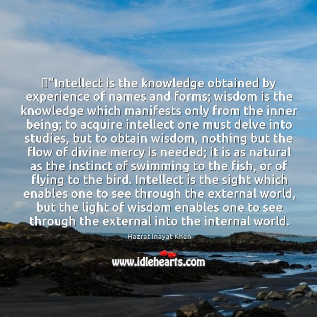 """""""Intellect is the knowledge obtained by experience of names and forms; wisdom Image"""