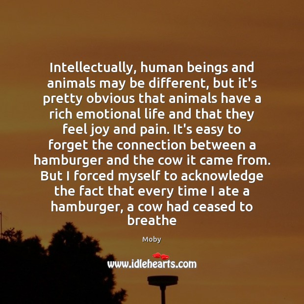 Intellectually, human beings and animals may be different, but it's pretty obvious Moby Picture Quote