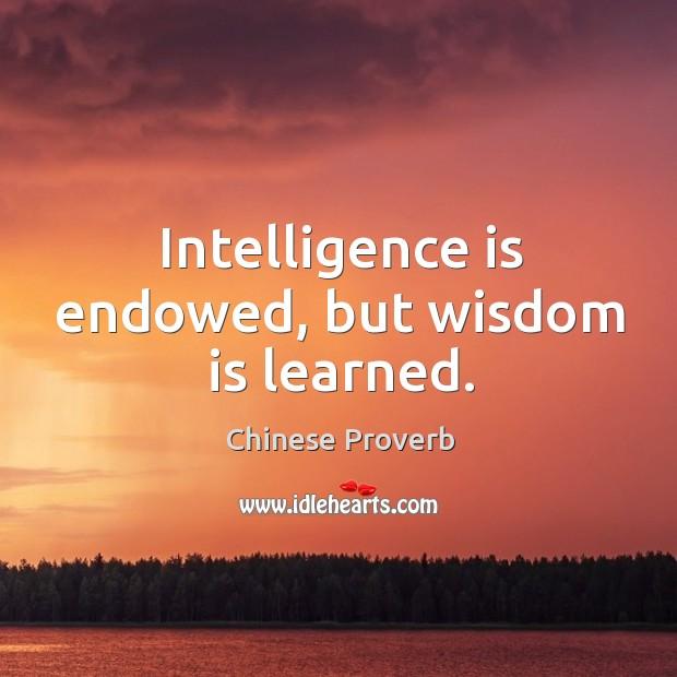Intelligence is endowed, but wisdom is learned. Image