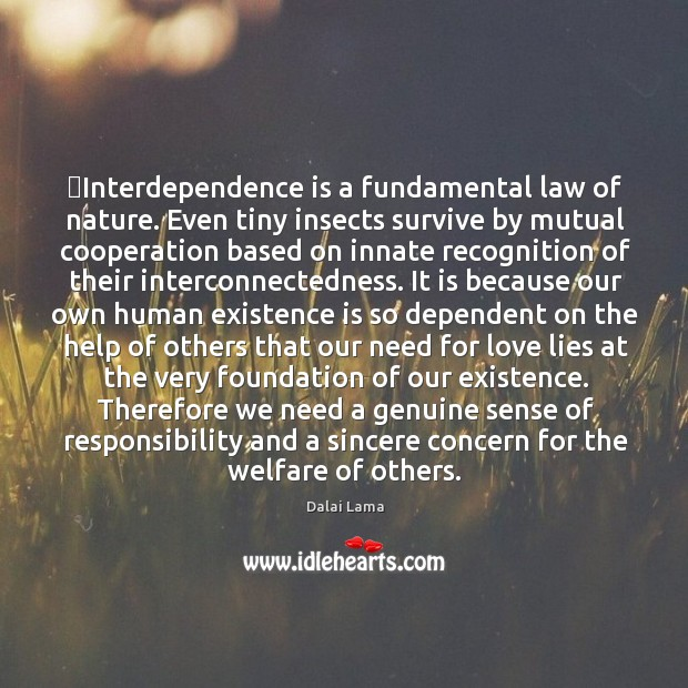 Interdependence is a fundamental law of nature. Even tiny insects survive by Image