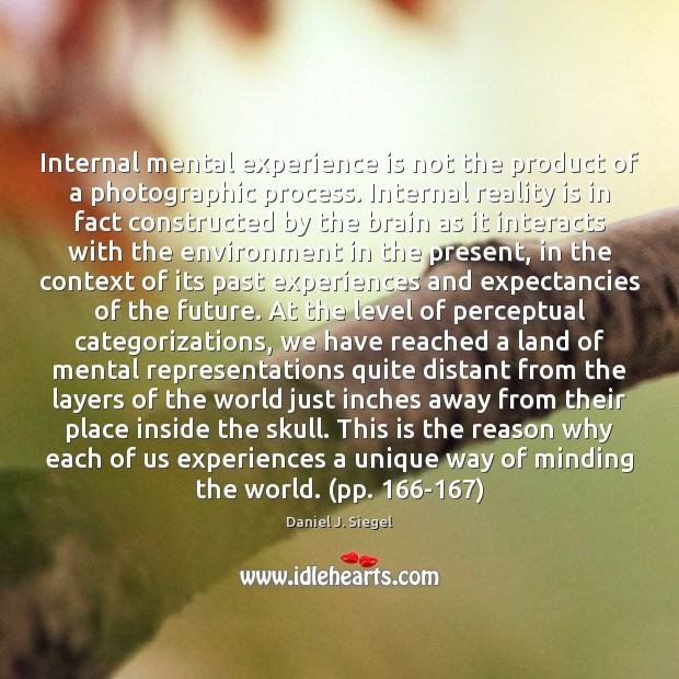 Internal mental experience is not the product of a photographic process. Internal Image