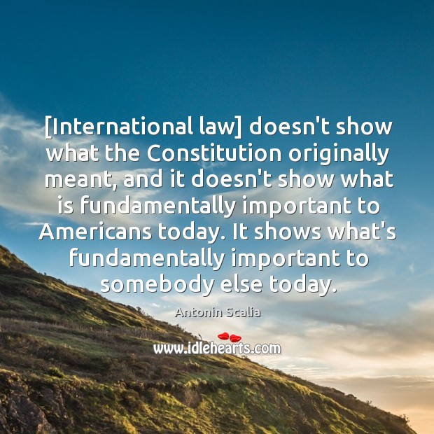 [International law] doesn't show what the Constitution originally meant, and it doesn't Image