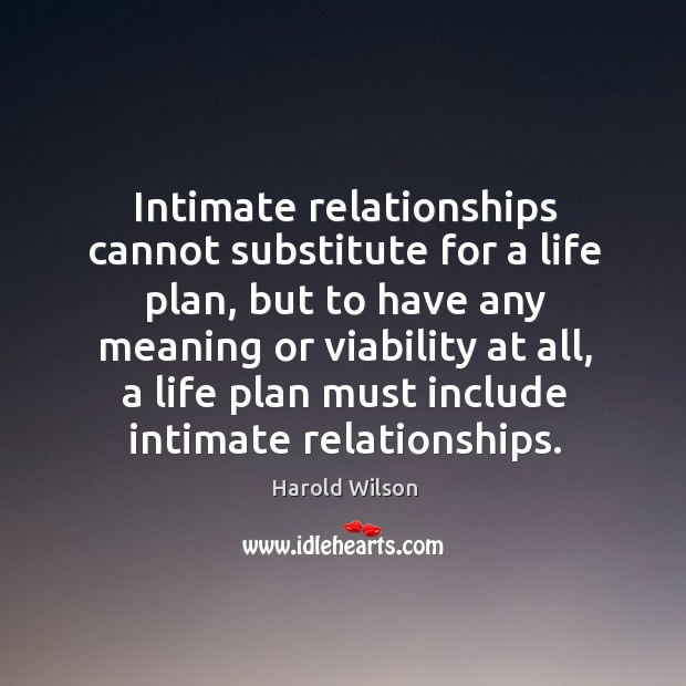 Image, Intimate relationships cannot substitute for a life plan, but to have any meaning or viability at all