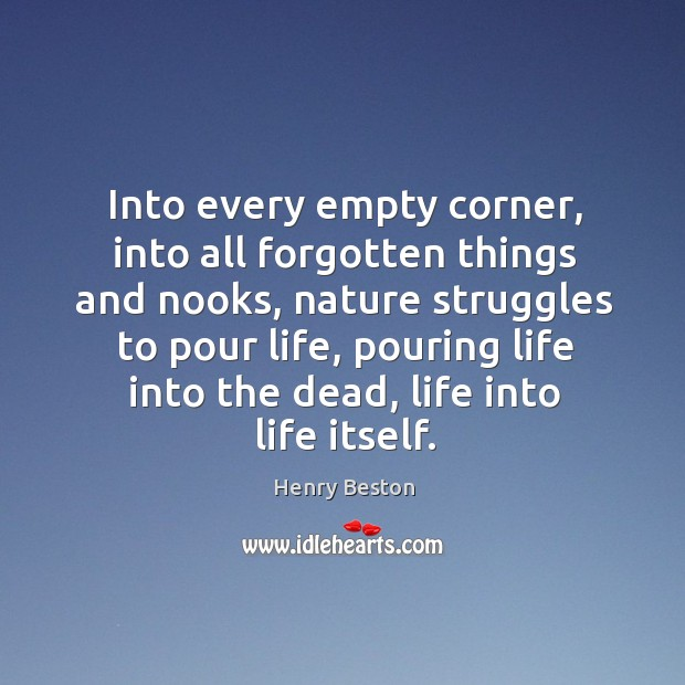 Into every empty corner, into all forgotten things and nooks, nature struggles Henry Beston Picture Quote