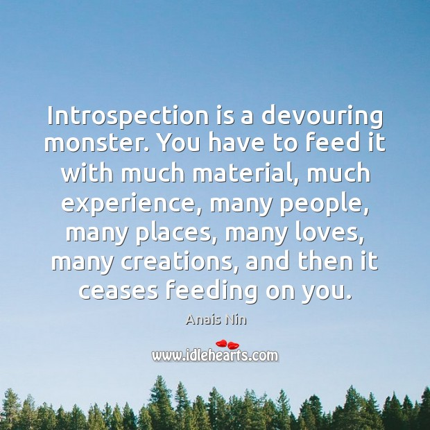 Introspection is a devouring monster. You have to feed it with much Image