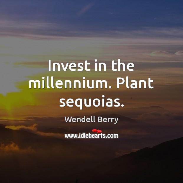 Invest in the millennium. Plant sequoias. Image
