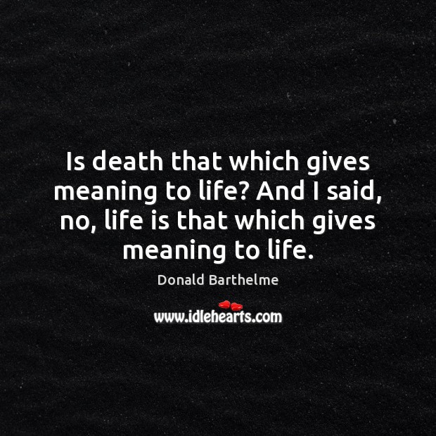 Is death that which gives meaning to life? And I said, no, Donald Barthelme Picture Quote
