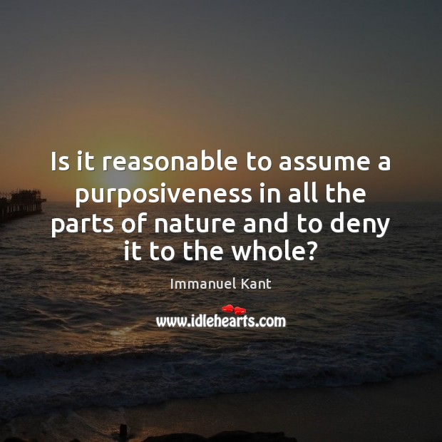 Image, Is it reasonable to assume a purposiveness in all the parts of