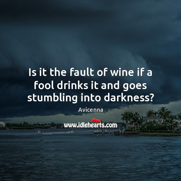 Image, Is it the fault of wine if a fool drinks it and goes stumbling into darkness?