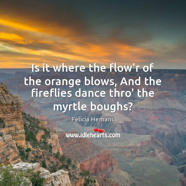 Is it where the flow'r of the orange blows, And the fireflies Felicia Hemans Picture Quote