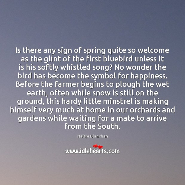 Is there any sign of spring quite so welcome as the glint Image