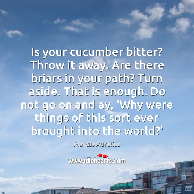 Is your cucumber bitter? Throw it away. Are there briars in your Marcus Aurelius Picture Quote