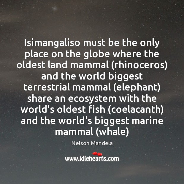 Isimangaliso must be the only place on the globe where the oldest Image