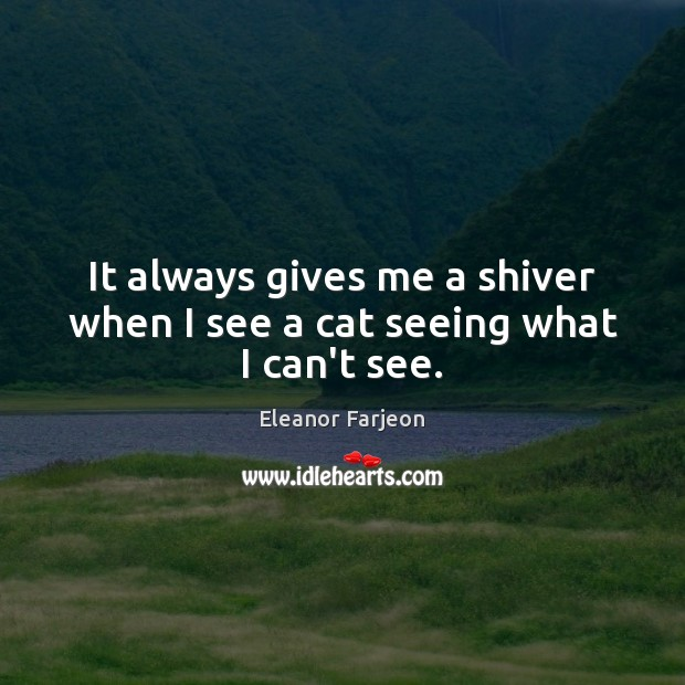 It always gives me a shiver when I see a cat seeing what I can't see. Image