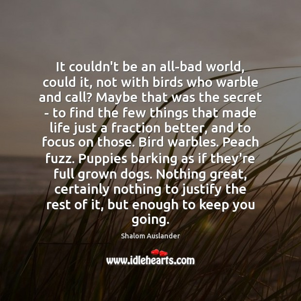 Image, It couldn't be an all-bad world, could it, not with birds who