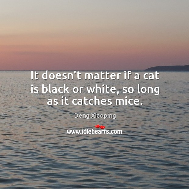 It doesn't matter if a cat is black or white, so long as it catches mice. Image