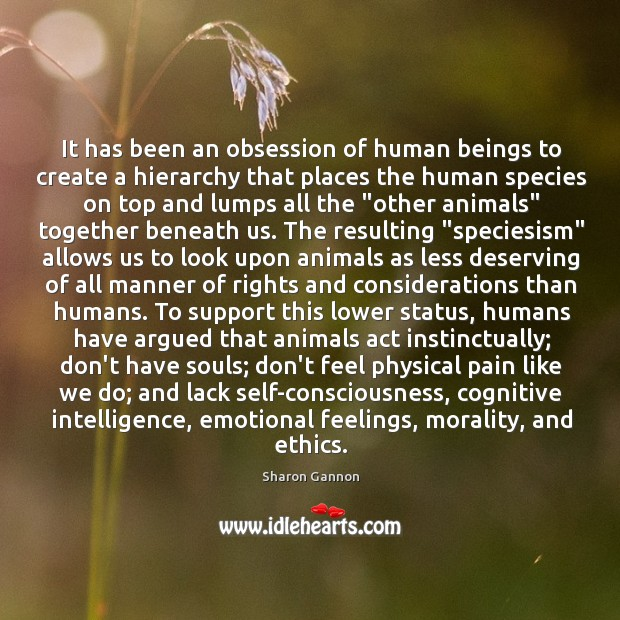 Image, It has been an obsession of human beings to create a hierarchy