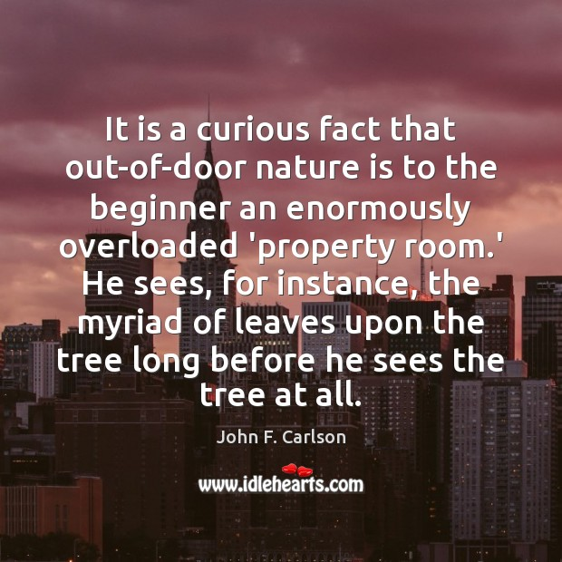 It is a curious fact that out-of-door nature is to the beginner Image