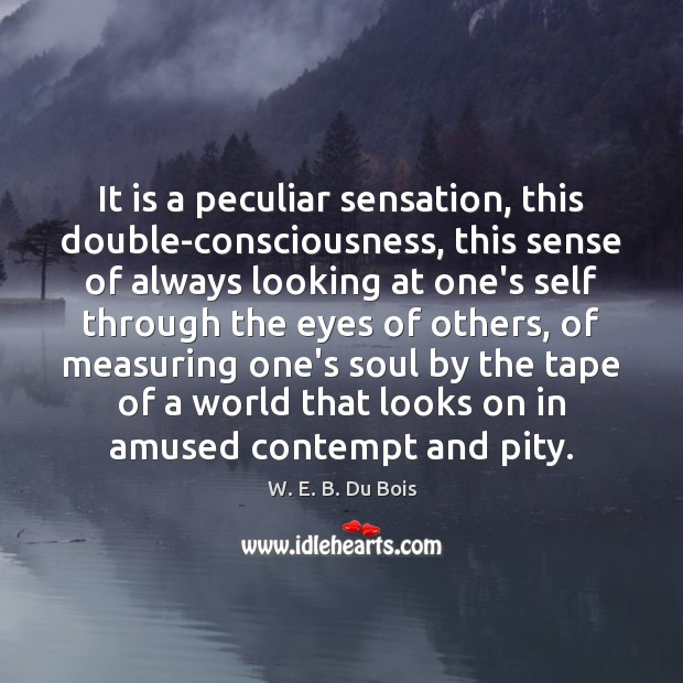 It is a peculiar sensation, this double-consciousness, this sense of always looking Image