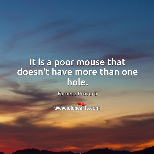 It is a poor mouse that doesn't have more than one hole. Faroese Proverbs Image