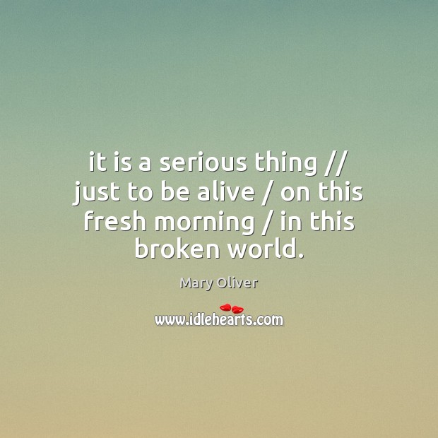 It is a serious thing // just to be alive / on this fresh morning / in this broken world. Image
