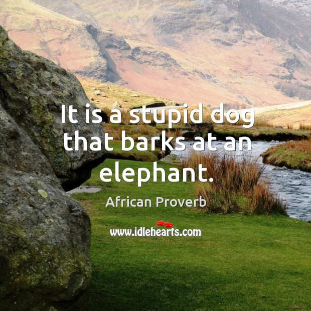 Image, It is a stupid dog that barks at an elephant.