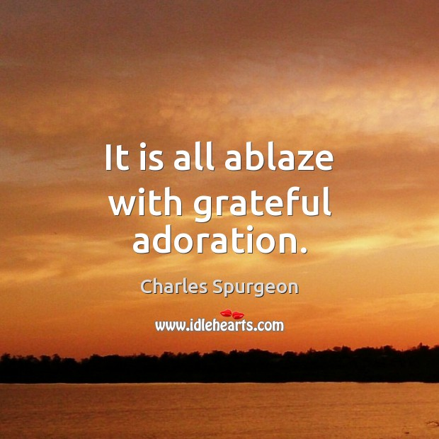It is all ablaze with grateful adoration. Image