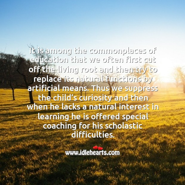 It is among the commonplaces of education that we often first cut off the living root and Image