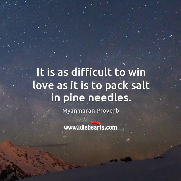 It is as difficult to win love as it is to pack salt in pine needles. Myanmaran Proverbs Image