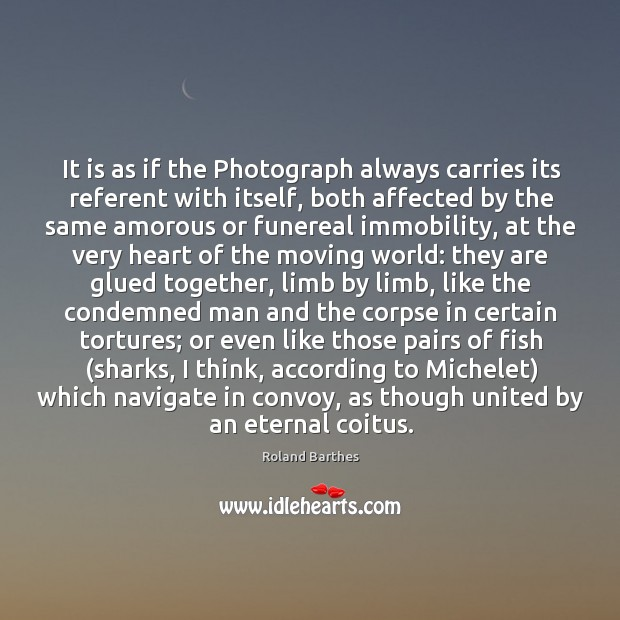 It is as if the Photograph always carries its referent with itself, Image