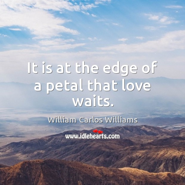 It is at the edge of a petal that love waits. William Carlos Williams Picture Quote