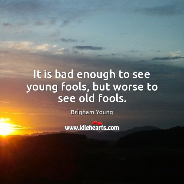 It is bad enough to see young fools, but worse to see old fools. Brigham Young Picture Quote