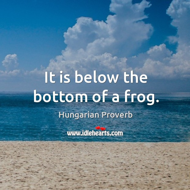 It is below the bottom of a frog. Image