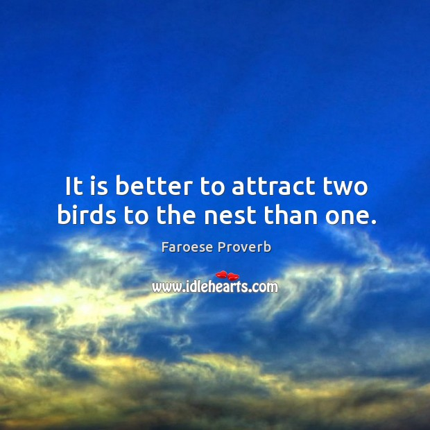 It is better to attract two birds to the nest than one. Faroese Proverbs Image