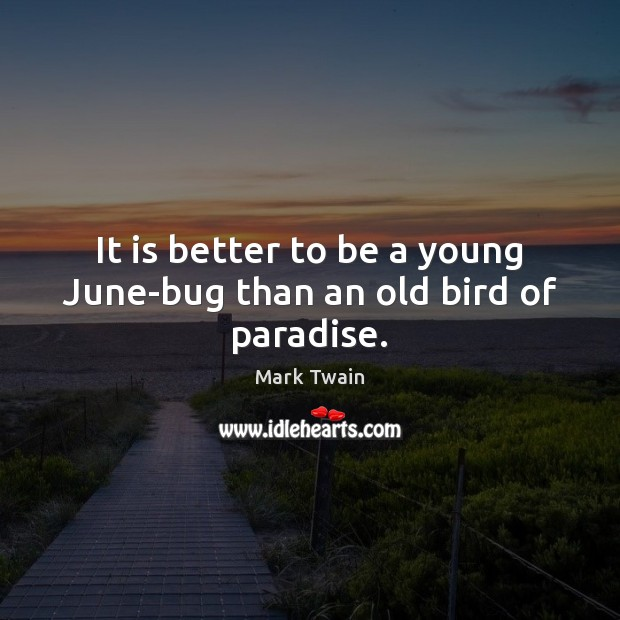 It is better to be a young June-bug than an old bird of paradise. Image