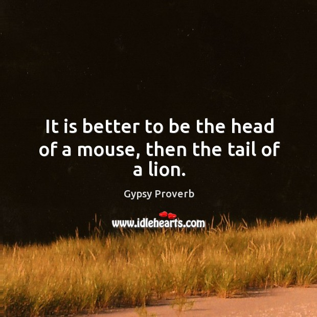 It is better to be the head of a mouse, then the tail of a lion. Gypsy Proverbs Image