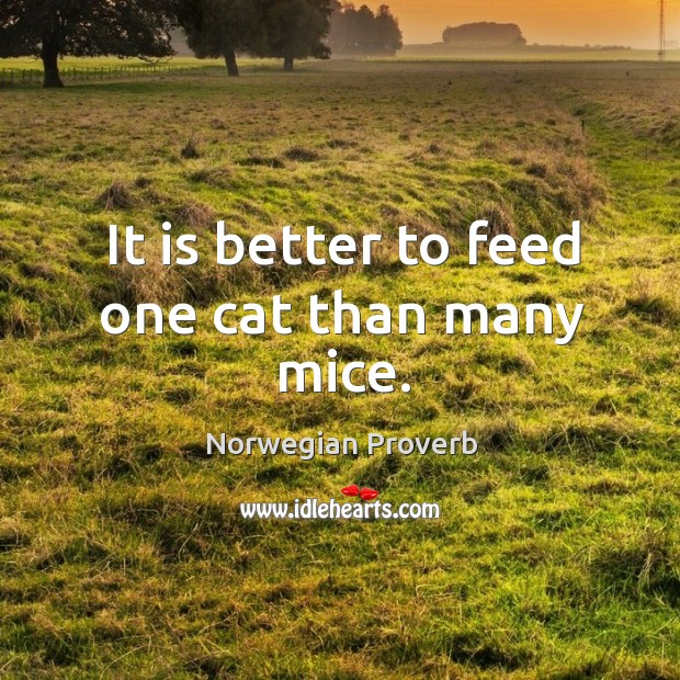It is better to feed one cat than many mice. Norwegian Proverbs Image