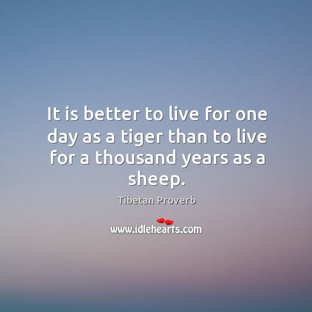 It is better to live for one day as a tiger than to live for a thousand years as a sheep. Tibetan Proverbs Image