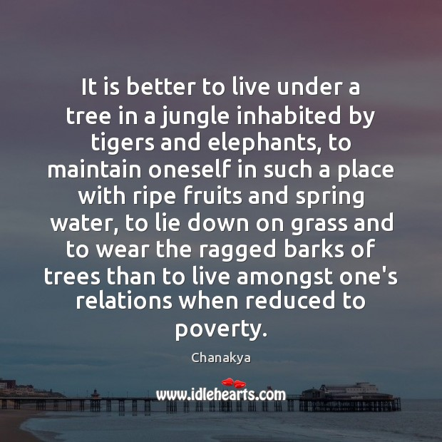 It is better to live under a tree in a jungle inhabited Water Quotes Image
