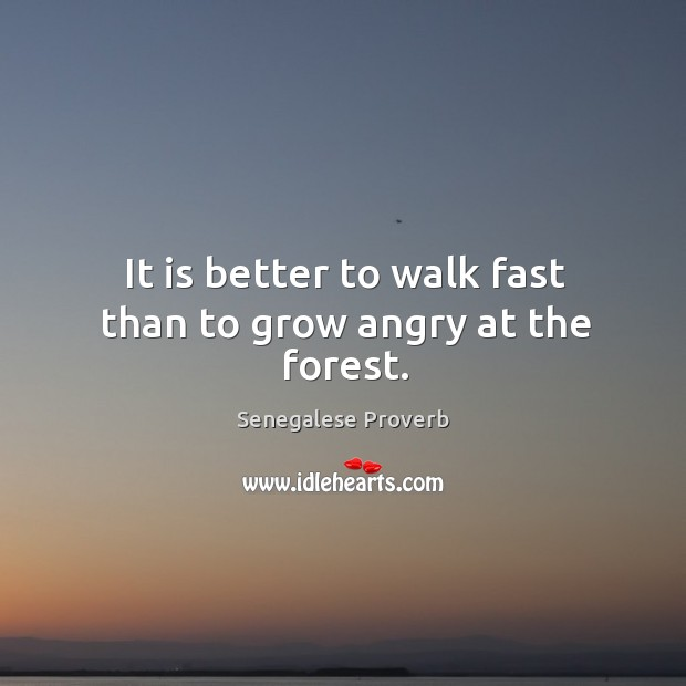 It is better to walk fast than to grow angry at the forest. Senegalese Proverbs Image