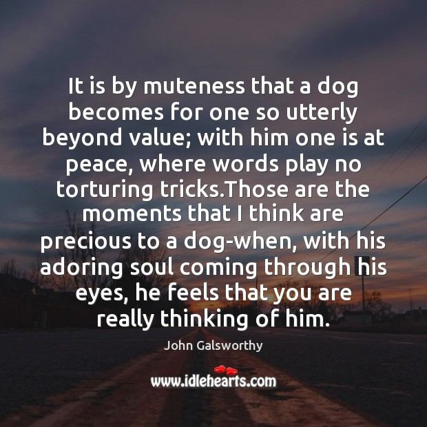It is by muteness that a dog becomes for one so utterly John Galsworthy Picture Quote