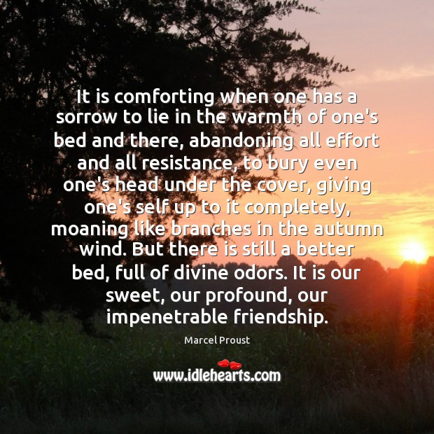 Image, It is comforting when one has a sorrow to lie in the