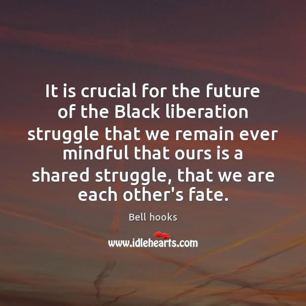 It is crucial for the future of the Black liberation struggle that Image