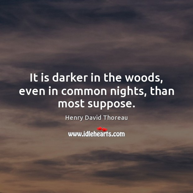 It is darker in the woods, even in common nights, than most suppose. Image
