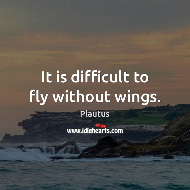 It is difficult to fly without wings. Plautus Picture Quote